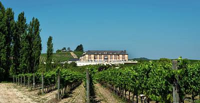 Pastoral Vineyard Photograph - Napa Valley Vineyard And Winery by Mountain Dreams