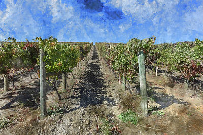 Napa Digital Art - Napa Valley Vineyard - Rows Of Grapes by Brandon Bourdages
