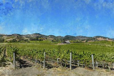 Napa Valley Vineyard With Big Blue Sky Art Print by Brandon Bourdages