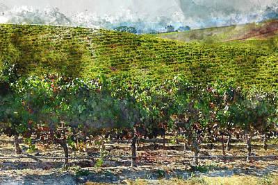 Photograph - Napa Valley Vineyards by Brandon Bourdages