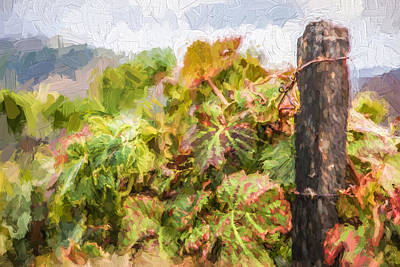 Winery Painting - Napa Vineyard by David Letts