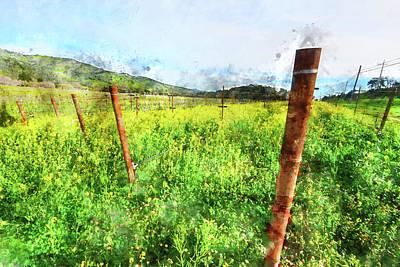 Vineyard Digital Art - Napa Vineyard In The Spring by Brandon Bourdages