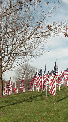 Photograph - 2 Of 6 Naperville Healing Field Of Honor At Rotary Hill by Michael Bessler