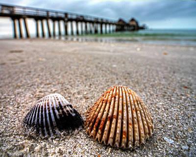 Photograph - Naples Pier Seashells Naples Fl Florida by Toby McGuire