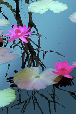 Digital Art - Naples Waterlilies by Pachek