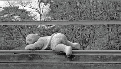 Photograph - Napping Sculpture No. 1-1 by Sandy Taylor