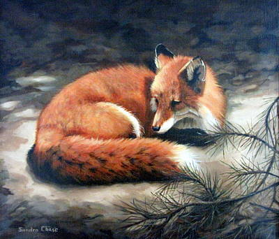 Fox Kit Painting - Naptime In The Pine Barrens by Sandra Chase