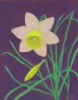 Pastel - Narcissus Hello by Anne Katzeff