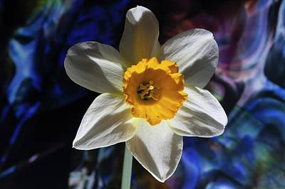 Photograph - Narcissus In The Garden Of The Unconscious II by Richard Thomas