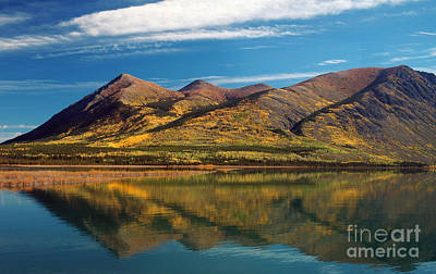 Photograph - Nares Mountain Yukon by Cindy Murphy - NightVisions