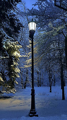 Photograph - Narnia by Phil Koch