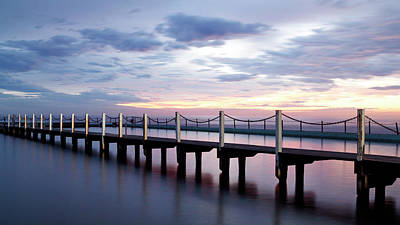 Photograph - Narrabeen Ocean Pool by Nicholas Blackwell
