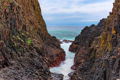 Photograph - Narrow Coastal Watery Path by Dee Browning