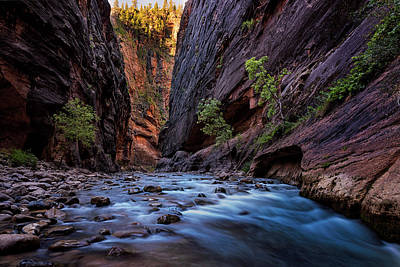 Photograph - Narrow Dawn by Dave Koch
