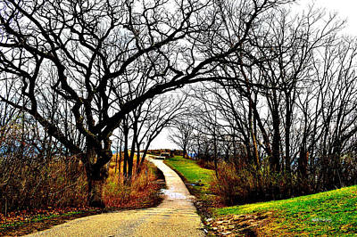 Photograph - Narrow Path by Susie Loechler