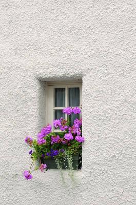 Photograph - Narrow Window With Purple Geranium  by Jenny Rainbow