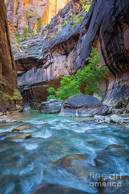 Zion National Park Photograph - Narrows Bend by Inge Johnsson