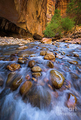 Zion National Park Photograph - Narrows Cascades by Inge Johnsson