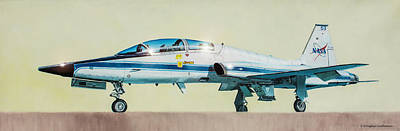 Painting - Nasa T-38 Talon by Douglas Castleman