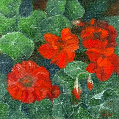 Painting - Nasturtiums by FT McKinstry