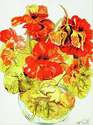 Vase Of Flowers Drawing - Nasturtiums by Joan Thewsey