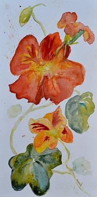 Painting - Nasturtiums Study 4 by Beverley Harper Tinsley