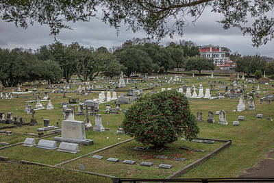 Photograph - Natchez Cemetary by Gregory Daley  MPSA