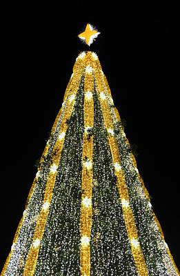 Photograph - National Christmas Tree 2015 by Cora Wandel