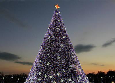 Photograph - National Christmas Tree 2016 by Cora Wandel