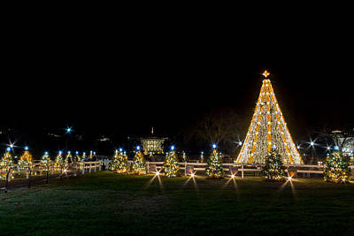 Photograph - National Christmas Tree by SR Green