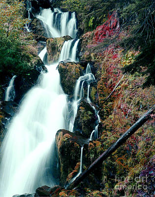 Photograph - National Creek Falls 07 by Peter Piatt