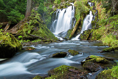 Photograph - National Creek Falls by Paul Riedinger