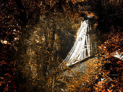 Roller Coaster Photograph - National Lampoon's Revolution by Sean Dorazio