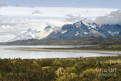 Summer Photograph - National Park Torres Del Paine, Chilean Patagonia by Dani Prints and Images