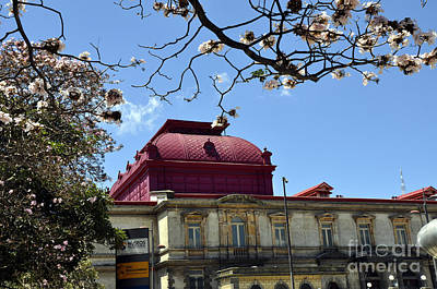 Photograph - National Theater Of Costa Rica 3 by Andrew Dinh