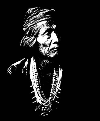Native American 13 Curtis Art Print by David Bridburg