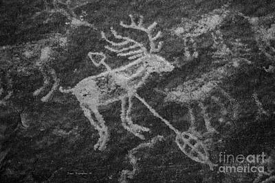 Photograph - Native American Deer Shot With Arrow Petroglyph On Sandstone B W by John Stephens