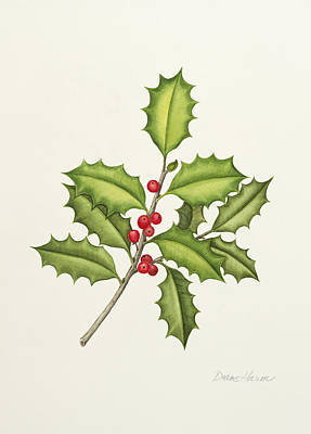 Painting - Native American Holly by Diane Harm