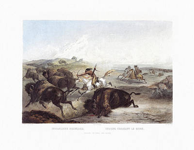 Painting - Native American Indians Hunting The Bison Wall Art Prints by Karl Bodmer