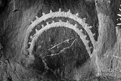 Photograph - Native American Petroglyph On Sandstone Bw by John Stephens