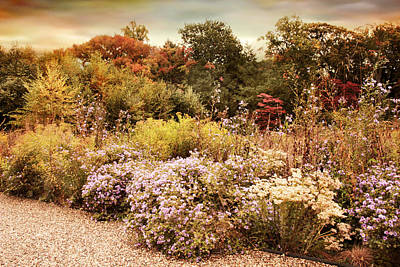 Photograph - Native Garden by Jessica Jenney