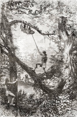 Native Indians Capturing A Tree Sloth Art Print by Vintage Design Pics