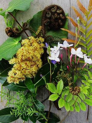 Photograph - Native New Zealand Bouquet by Dianne  Connolly