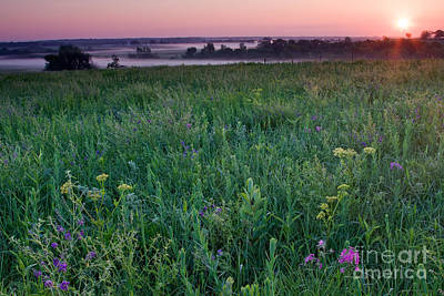 Photograph - Native Prairie Meadow At Sunrise by Kenneth M. Highfill