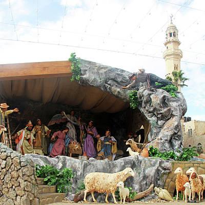 Photograph - Nativity Sheep by Munir Alawi