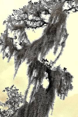Digital Art - Natural 3 16e by John Hintz