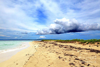 Photograph - Natural Beach At Isla Zapatillas Panama by John Rizzuto