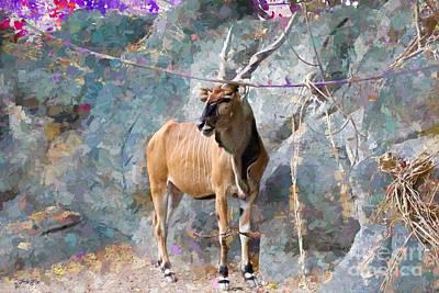 Rocks Painting -  Natural Beauty   by Judy Kay