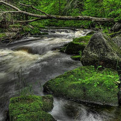 Photograph - Natural Bridge Across The Prairie River by Dale Kauzlaric