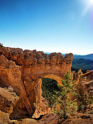 Photograph - Natural Bridge At Bryce Canyon National Park by Phil Cardamone